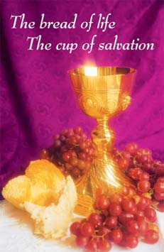 Church Communion Bulletin Covers http://www.catholicsupply.com/churchs/bullfc.html